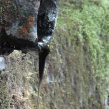 La fontaine miraculeuse de Saint-Rouin